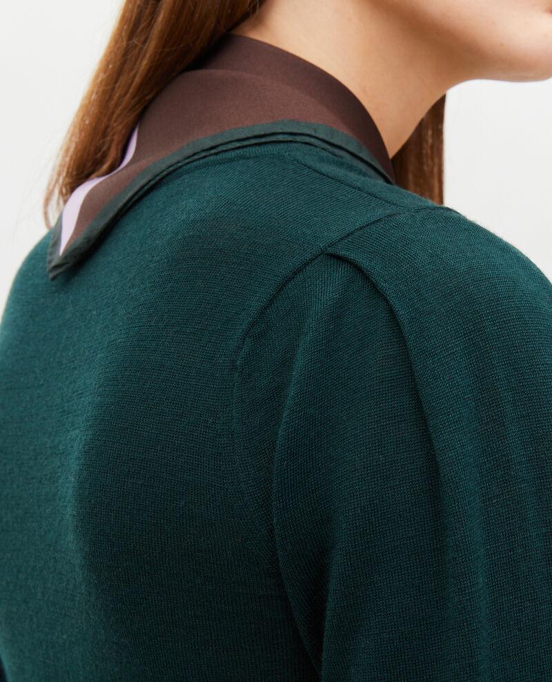 Pull en laine mérinos à col rond Scarab Molineta