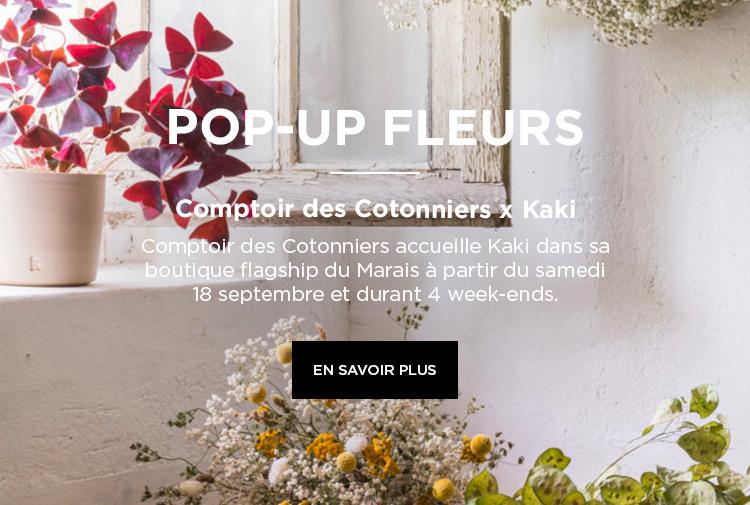 Comptoir des Cotonniers x Kaki - Mobile