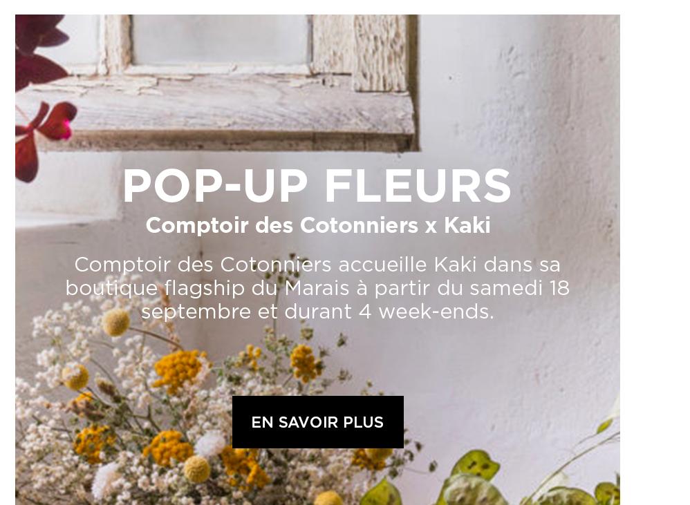 Comptoir des Cotonniers x Kaki - Desktop